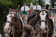 Video Of The Budweiser Clydesdales
